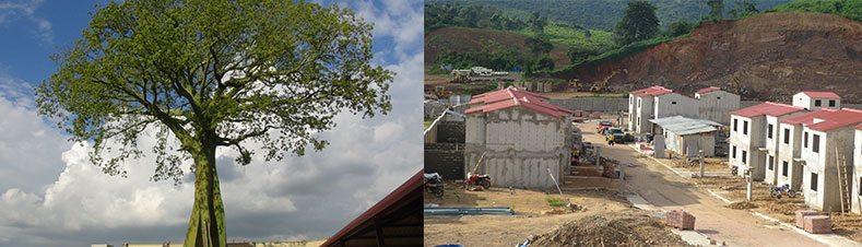 Rey Eduardo Avanza En Su Construcci N Villa Del Rey